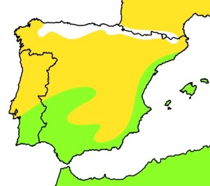 mapa abubilla