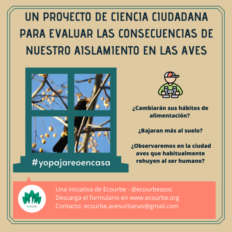 Cartel proyecto aves aislamiento